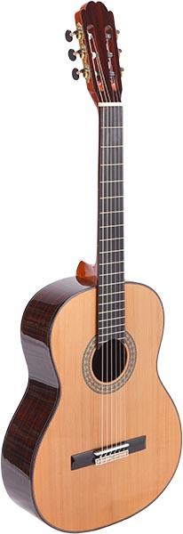 LCS-101 violão phx